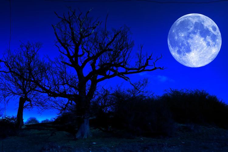 Внимание! Синя луна!